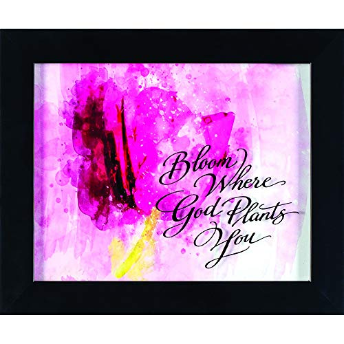 Dicksons Bloom Where God Plants You Floral Watercolor Fuchsia Wood Framed Wall Sign
