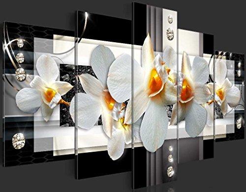 b-A-0099-b-n-b-A-0099-b-o-b-A-0099-b-p-Abstrakt-Blumen-Orchidee