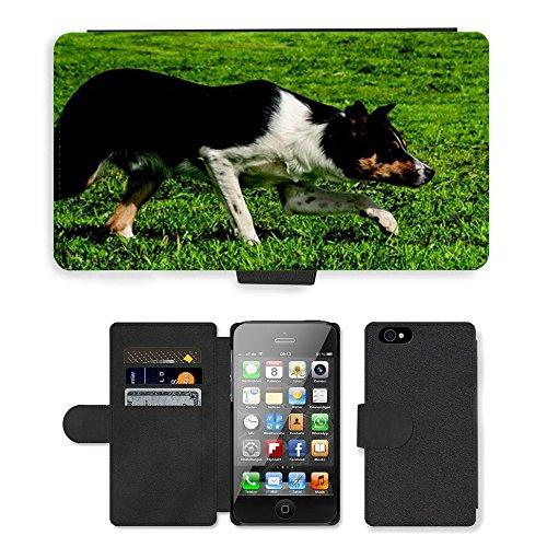 Just Phone Cases PU Leather Flip Custodia Protettiva Case Cover per // M00128035 Chien Border Collie Border Collie // Apple iPhone 4 4S 4G