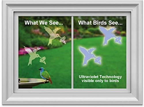 GC Window Alert Hummingbird Window Decal Screen Saver Set of - Alert Decals