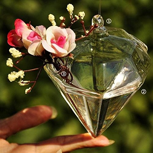SOLEDI Terrarium Plants Hanging Glass Diamond Plant Hanger Air Plant Holder Container Terrariums From Glass For Flowers Plants Home Garden Wall Decor
