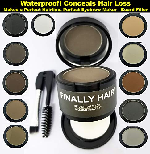 Finally Hair Black Dab-on Hair Fibers & Hair Loss Concealer