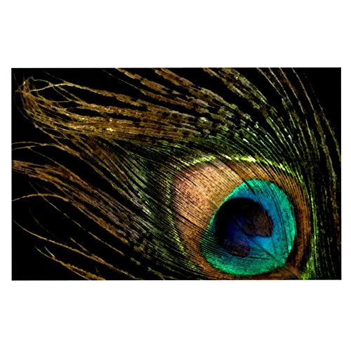 """well-wreapped Kess InHouse Alison Coxon """"Peacock Black"""" Feeding Mat for Pet Bowl, 18 by 13-Inch"""