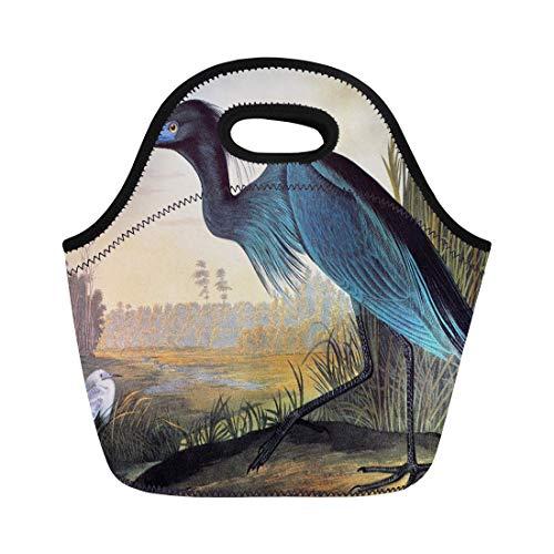 Ablitt Lunch Bags 1827 Audubon Little Blue Heron 1838 America Beak Biology neoprene lunch bag lunchbox tote bag portable picnic bag cooler bag ()