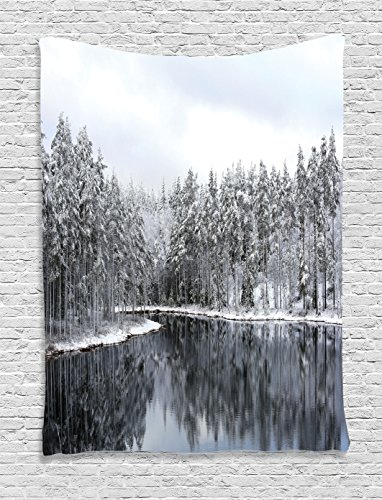 Ambesonne Woodland Tapestry, Lake Surrounded by Snow Covered Trees on a Cold Winter Day in Finland Reflections, Wall Hanging for Bedroom Living Room Dorm, 60 W X 80 L Inches, White Grey ()