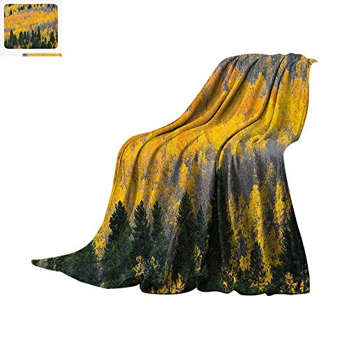 Fall Digital Printing Blanket Colorful Aspen Forest in Colorado Rocky Mountains Western Wilderness USA Theme Oversized Travel Throw Cover Blanket 50