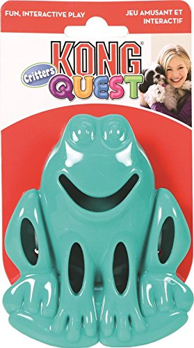 KONG Quest Critter Frog Toy, Small (Quest Kong compare prices)