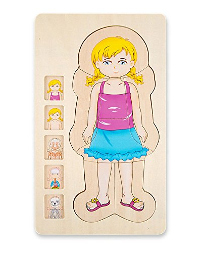 Puzzle Wood Body (Your Body 5 layers Wooden Puzzle Girl Grow up Body Structure Jigsaw Puzzles for Toddlers)