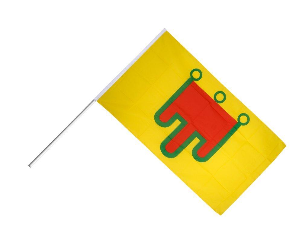 Digni Grand drapeau France Auvergne sur hampe 60 x 90 cm sticker gratuit