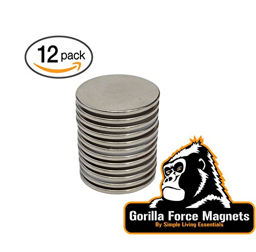 Gorilla Magnet - Gorilla Force Neodymium Disc Magnets Pack of 12,Very Powerful, Strong, Permanent -1.26