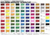 Holbain Artists' Gouache 12color set G711 15ml