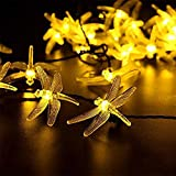 Aohro 21 Ft/6.5M 30 LED Dragonfly Solar String Fairy Lights Waterproof Decorative Lighting for Outdoor, Garden, Patio, Christmas, Xmas Tree, Holiday Party(Warm White)
