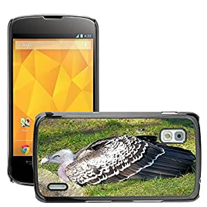 Hot Style Cell Phone PC Hard Case Cover // M00116148 Vulture Aasvogel Feather Pinnate // LG Nexus 4 E960