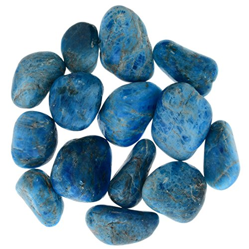 Digging Dolls: 1 lb Tumbled Blue Apatite Stones from Madagascar - 0.75'' to 1.50'' Avg. - Exceptional Quality Rocks for Crafts, Art, Crystal Healing, Wicca, Reiki and More! by Digging Dolls