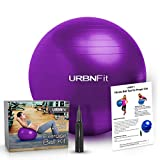 Exercise Ball (Multiple Sizes) for Fitness, Stability, Balance & Yoga - Workout Guide & Quick Pump Included - Anit Burst Professional Quality Design (Purple, 55CM)