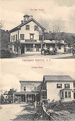 The Park Hotel Central Hotel Fremont Center, New York, Postcard - Park York Central New Hotel