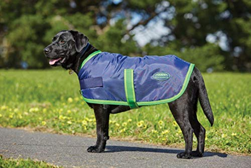(Weatherbeeta Windbreaker 420D Dog Coat Navy/Lime 26