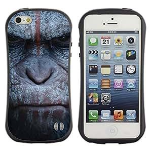 Paccase / Suave TPU GEL Caso Carcasa de Protección Funda para - Monkey Gorilla Primate Animal Nature - Apple Iphone 5 / 5S