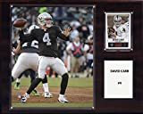 C&I Collectables NFL Oakland Raiders Derek Carr Player Plaque, 12 x 15-Inch