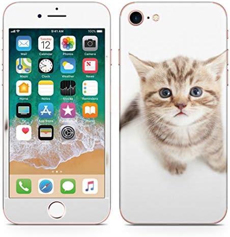 igsticker iPhone SE 2020 iPhone8 iPhone7 専用 スキンシール 全面スキンシール フル 背