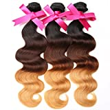 DSOAR 8A Brazilian 3 Tone Ombre Color Body Wave Weft Mixed Virgin Hair 3 Bundles 100% Remy Human Hair Extensions (T1B/4/27,16 18 20 inch)