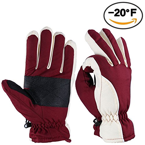 Ski Gloves, OZERO -20ºF Cold Proof Winter Thermal Skiing Glove for Men & Women - Reinforced PU Palm and TR Cotton Insert - Water Resistant & Windproof - Wine-Cream (Get Best Heated Gloves compare prices)