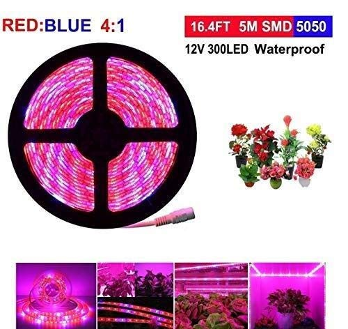 ACDOS LED vegetative lamp, top light growth lamp with rotating dimmer for indoor plants, full spectrum SMD 5050 red blue 4:1 growth rope lamp for aquarium greenhouse hydroponic (16.4 ft single lamp) A (Best Spectrum For Vegetative Growth)