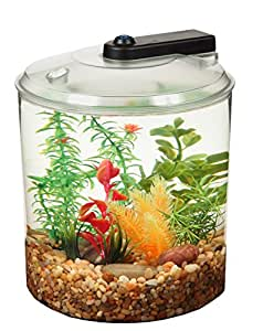 Kollercraft api betta kit 360 degree fish tank 1 5 gallon for Betta fish tanks amazon