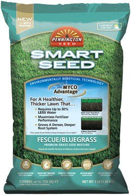 Pennington GL61100526630 100526630 Smart Seed, 3 LB, Green (Best Grass Seed For Heavily Shaded Areas)