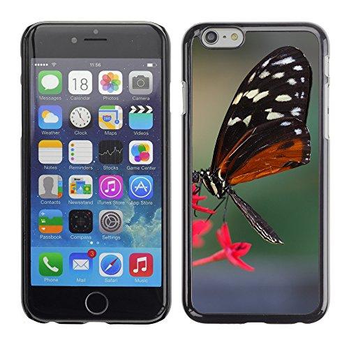 "Premio Sottile Slim Cassa Custodia Case Cover Shell // F00017227 Hécalé papillon // Apple iPhone 6 6S 6G 4.7"""