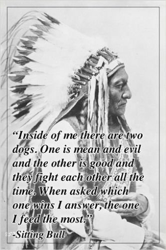 Hse Inspirational Quote Poster Sitting Bull Indian Chief Headdress 24x36 2 To 5 Days Shipping From Usa