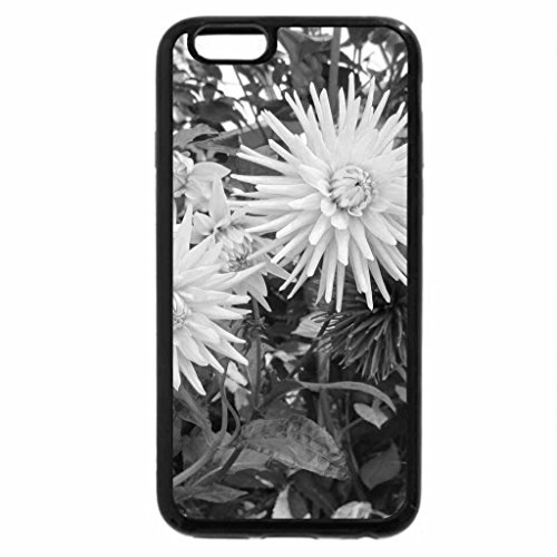 iPhone 6S Case, iPhone 6 Case (Black & White) - A day at the Garden 15 with Dahlia
