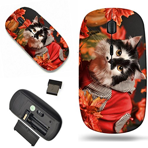 Luxlady Wireless Mouse Travel 2.4G Wireless Mice with USB Receiver, 1000 DPI for notebook, pc, laptop, macdesign IMAGE ID: 24174571 A pretty little calico kitten sits between pumpkins and autumn leave (Pretty Pumpkin)