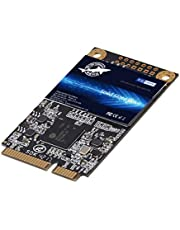 SSD SATA mSATA 1TB Dogfish Internal Solid State Drive High Performance Hard Drive for Desktop Laptop SATA III 6Gb/s Includes SSD 16GB 32GB 60GB 64GB 120GB 128GB 240GB 250GB 480GB 500GB 1T (1TB, Msata)
