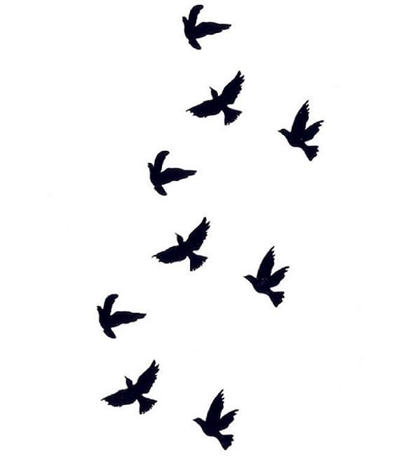 Body Art: tatuaje temporal, 9 pájaros negros: Amazon.es: Belleza