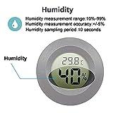 JEDEW 2-Pack Mini Hygrometer Thermometer Digital
