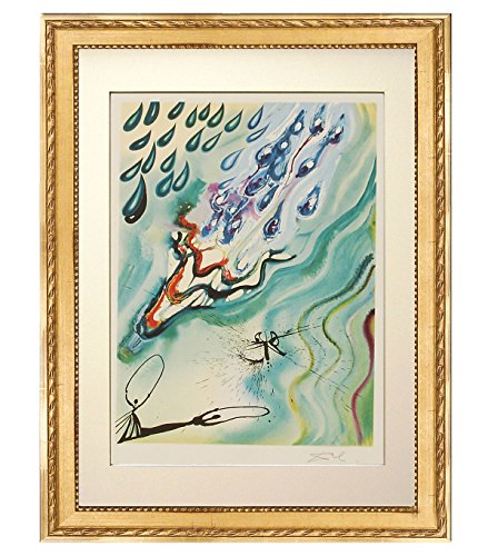 Lithographs Signed Dali (Salvador Dalí 'The Pool of Tears'. Custom framed lithograph on Arches paper, from the original signed plate. Limited Edition. Framed size: 31