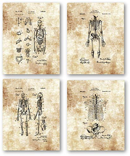 Vintage Human Skeleton Drawings Artwork - Set of 4 8 x 10 Unframed Patent Prints - Great Gift for Physicians, Medical Students, Anatomy and Physiology Professors - Anatomical Medical Art Wall Decor