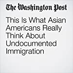 This Is What Asian Americans Really Think About Undocumented Immigration | Janelle Wong