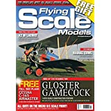 NEWSPAPER  Amazon, модель Flying Scale Models, артикул B06WVN68Z8