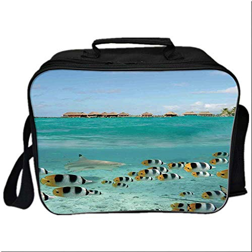 (Ocean Picnic Bag Cooler Bag,Blacktip Reef Shark Chasing Butterfly Fish Lagoon of Bora Bora Tahiti for Kids Boys Girls,10.6