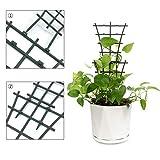 Feitore Mini Plant Trellis Garden Trellis for