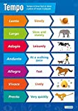 "Tempo Music Poster|Educational Wall Poster for Students & Teachers, Glossy Paper measuring 33"" x 23.5"" Easy Learning with Colorful Images for the Classroom or Home, by Daydream Education"