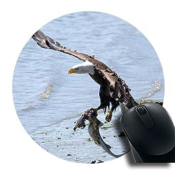 Tom diseño Eco redondo Mousepad con Eagle caza peces personalizado arte sobremesa ratón Gaming Laptop Mousepad
