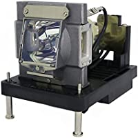 AuraBeam Professional Replacement Projector Lamp for NEC NP22LP With Housing (Powered by Philips)