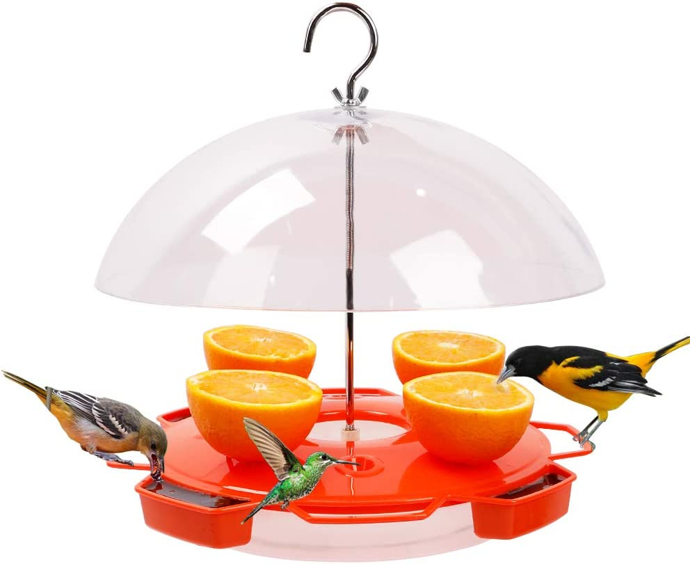 Solution4Patio Baltimore Oriole Feeder Hummingbirds Combination, 3 Types Food, Orange, Grape Jelly, Nectar, 34-Ounce Nectar Capacity, Weather Guard Squirrel Baffle #G-B122A00-US