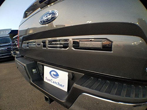 Top 10 best tailgate insert letters f150: Which is the best one in 2020?