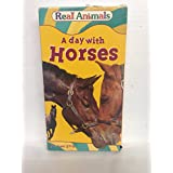Real Animals: Day With Horses