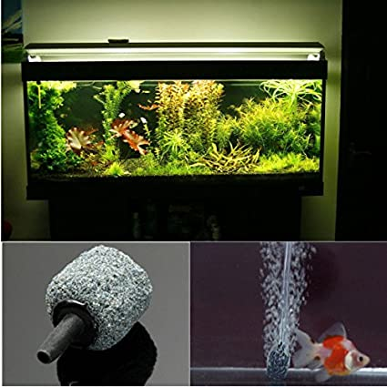 Calli HidroponÃa acuario difusor de aire aireador pecera burbuja
