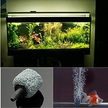 Bargain World HidroponÃa acuario difusor de aire aireador pecera burbuja: Amazon.es: Hogar